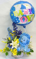 Inglis' Baby Boy Basket with Plush Animal from Inglis Florist in Tucson, AZ