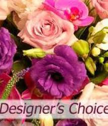 Designer's Choice Special<br>Inglis Florists