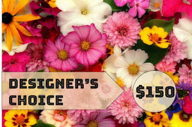 Inglis' Designer's Choice $150 Value from Inglis Florist in Tucson, AZ