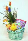 Happy Spring Bundle<br>Inglis Florists