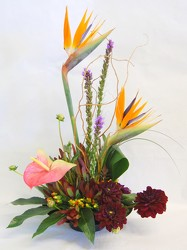 from Inglis Florist in Tucson, AZ