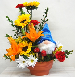 Birthday Gnomlin Garden<br>Inglis Florists from Inglis Florist in Tucson, AZ