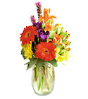 FTD Festival of Color Bouquet