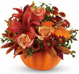 Autumn's Joy by Teleflora from Inglis Florist in Tucson, AZ