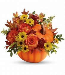 Teleflora's Warm Fall Wishes Bouquet from Inglis Florist in Tucson, AZ