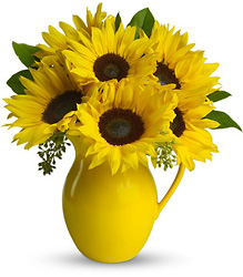 Teleflora's Sunny Day Pitcher of Sunflowers from Inglis Florist in Tucson, AZ