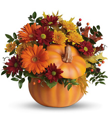 Teleflora's Country Pumpkin from Inglis Florist in Tucson, AZ