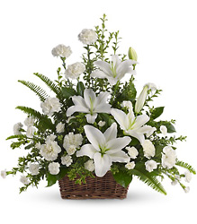 Peaceful White Lilies Basket<br>Teleflora from Inglis Florist in Tucson, AZ