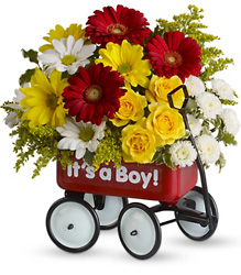 Baby's Wow Wagon by Teleflora from Inglis Florist in Tucson, AZ