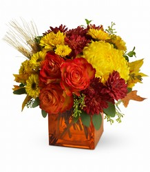 Teleflora's Autumn Expression from Inglis Florist in Tucson, AZ