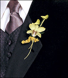 Cat's-Eye Green Orchid Boutonniere from Inglis Florist in Tucson, AZ