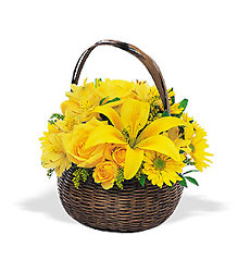 Get Better Basket from Inglis Florist in Tucson, AZ