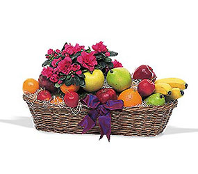 Plant and Fruit Basket from Inglis Florist in Tucson, AZ