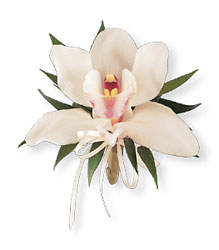 Cymbidium Orchid Corsage from Inglis Florist in Tucson, AZ