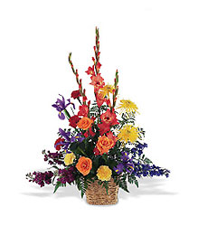 Rainbow Basket from Inglis Florist in Tucson, AZ