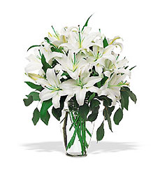 Perfect White Lilies from Inglis Florist in Tucson, AZ