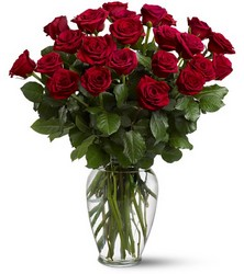 Two Dozen Red Roses from Inglis Florist in Tucson, AZ