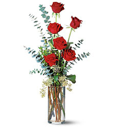 Six Red Roses from Inglis Florist in Tucson, AZ