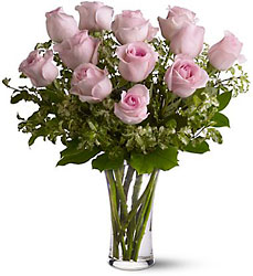A Dozen Pink Roses from Inglis Florist in Tucson, AZ